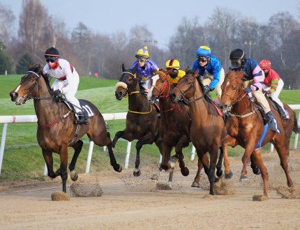 Les plus joues : Quels sont les meilleurs chevaux du Kentucky Derby ?
